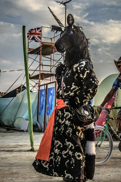 Burning Man 2014-7233.jpg