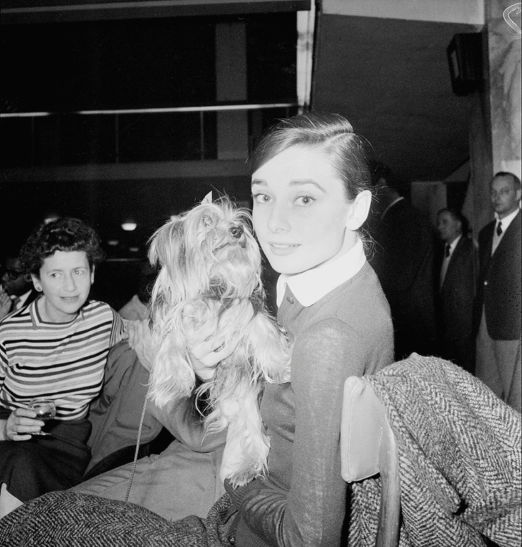 ". American actress Audrey Hepburn is shown with her Yorkshire terrier Famous at Ciampano Airport in Rome, Italy, Jan. 23, 1958.  Hepburn and the cast of ""The Nun\'s Story\"" are traveling to Stanleyville, Belgian Congo, for filming of the movie.  Part of the movie is also shot in Rome\'s Cinecitta.  (AP Photo/Ivan Croscenco)"