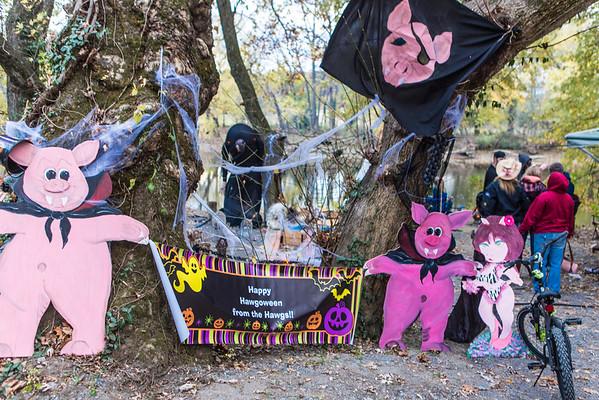 Hagerstown Halloween 2014 - Guest Photographer