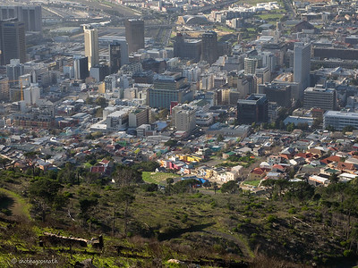 View from Signal Hill - the colours of Bo Kaap clearly visible