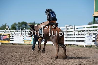 2020 MB Finals HS/Jr Bull Riding