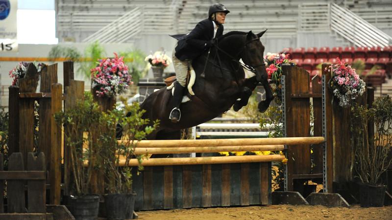 Horse show (21).jpg