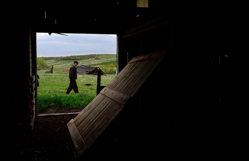 . U.S. Fish and Wildlife Refuge Manager Daivd Lucas is seen walking through the grass at the Lindsay Ranch at the Rocky Flats National Wildlife Refuge in Jefferson County, Colorado on May 14, 2018. (Photo by Matthew Jonas/Staff Photographer)