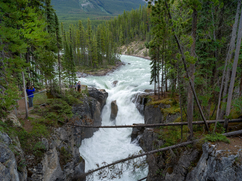 Elevated view of waterfall in forest, Athabasca Falls, Icefields Parkway, Jasper, Alberta, Canada