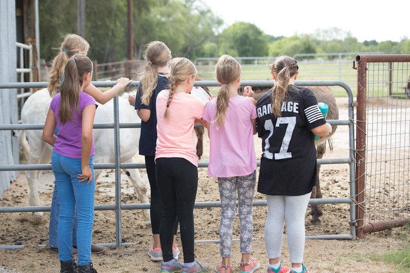 horse camp 17 (33 of 79).jpg