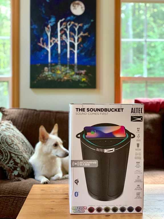 #ad Read our review of the awesome @AltecLansing SoundBucket XL Waterproof Bluetooth Portable Speaker from @BestBuy #myalteclansing: https://bby.me/ah7dt