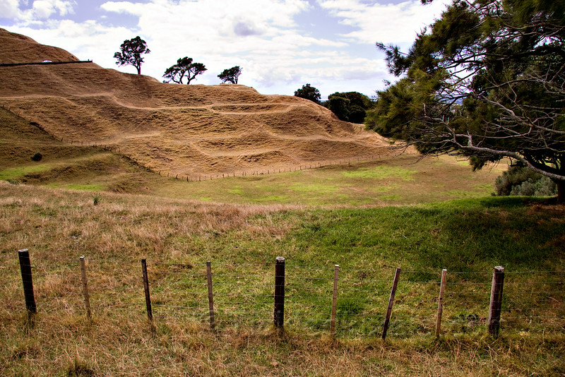 One Tree Hill Domain