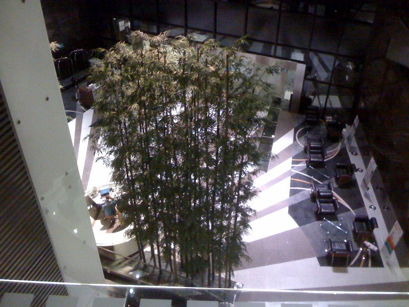 The main lobby at Prince Court from the fourth floor