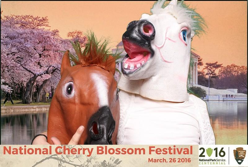 Boothie-NPS-CherryBlossom- (414).jpg