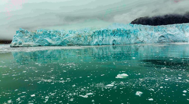 Glacier Bay 19.jpg