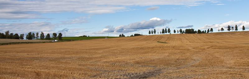 Høst2010-165