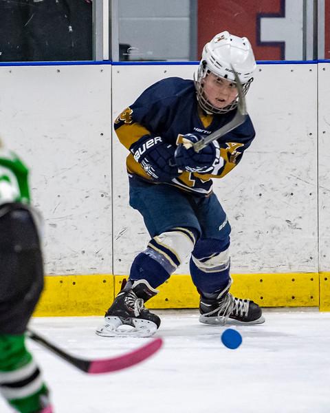 2019-02-03-Ryan-Naughton-Hockey-95.jpg