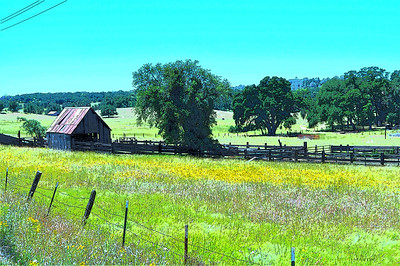 BACK COUNTRY BARNS