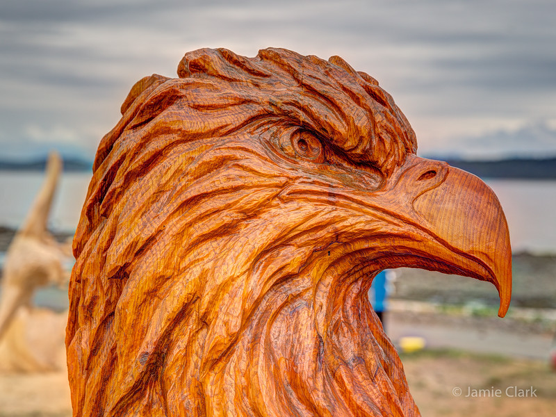 Bald eagle. Chainsaw Sculpture Competition. Campbell River British Columbia