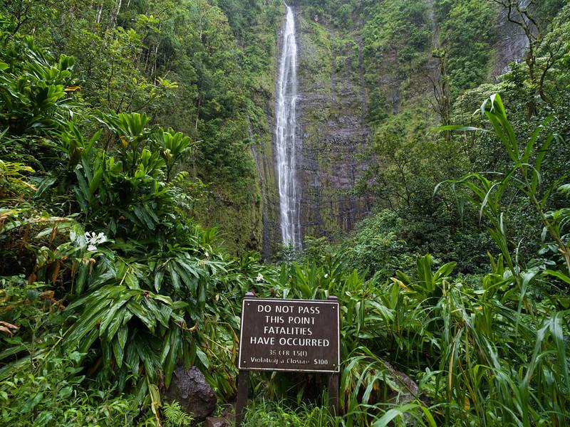 -Hawaii 2018-B1012951-20181013.jpg