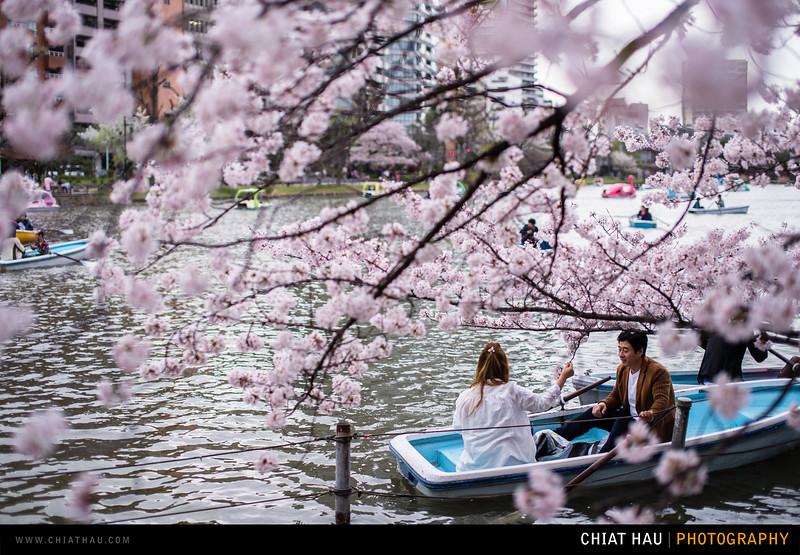 Japan_Tokyo_Apr_2016-357.jpg