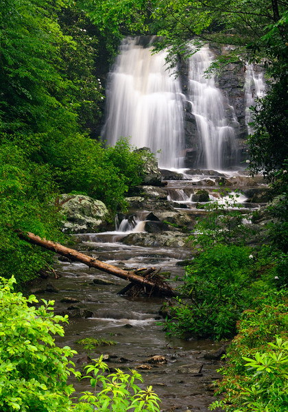 Great Smoky Mountains National Park 2009