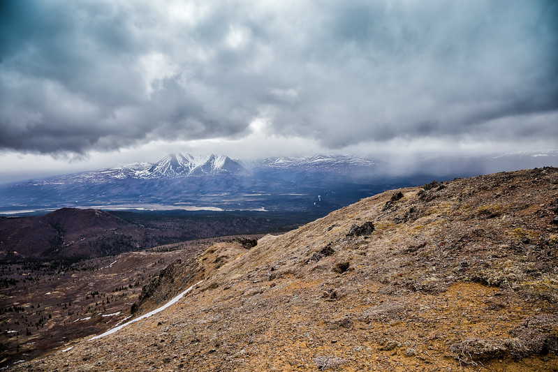 Denali State Park Heli Hike Alaska