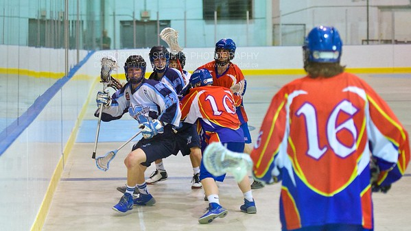2014-06-06 Newmarket at Mimico