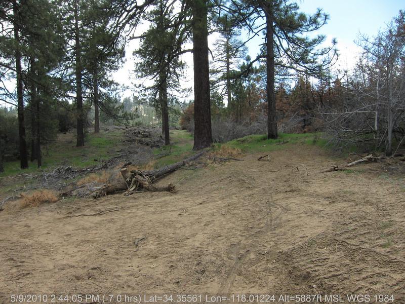 20100509186-Trail Recon, Hillyer Trailhead.JPG