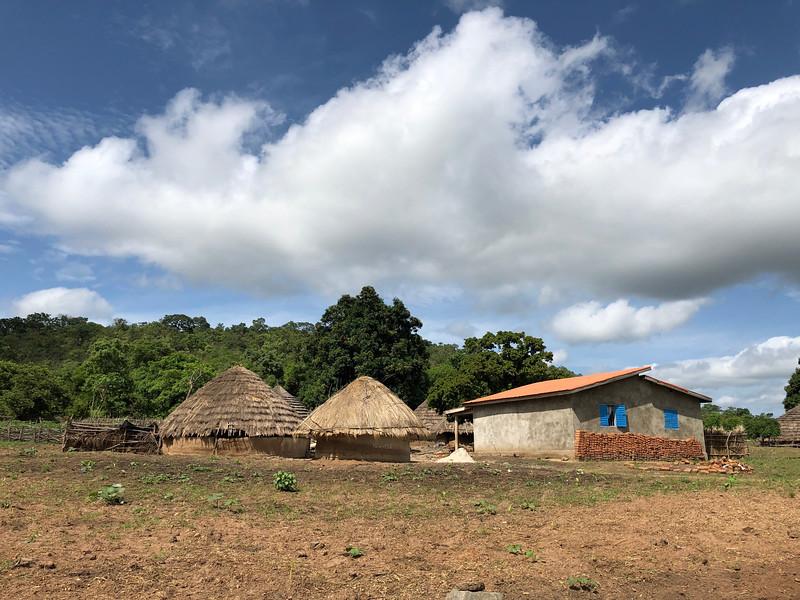 Guinea-18.jpg