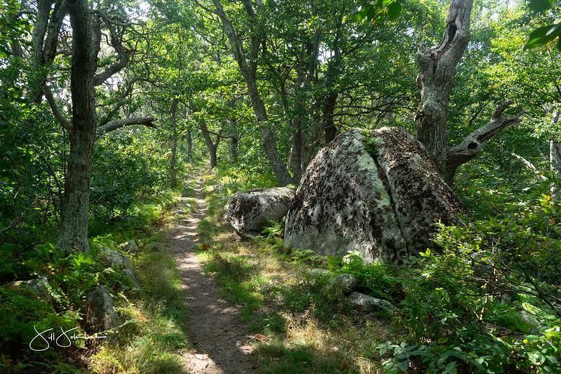 at hike-00495.jpg