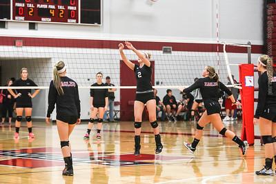 Madison Edgewood Girls Volleyball - Sept 21, 2013