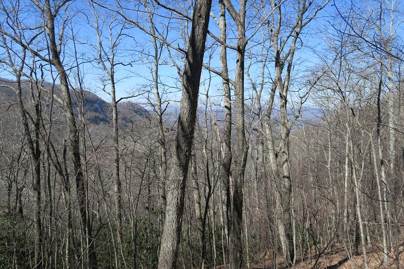 Trombatore Trail - 3,350'