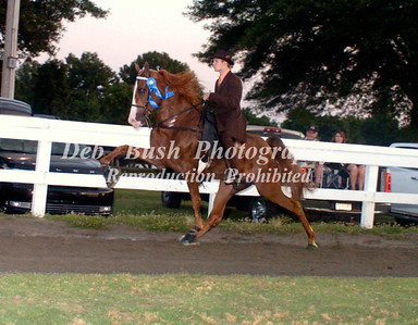 CLASS 20 FOUR YR OLDS OPEN SPEC