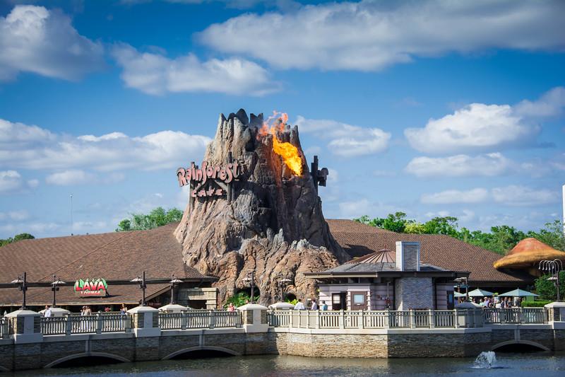 Disney World416.jpg