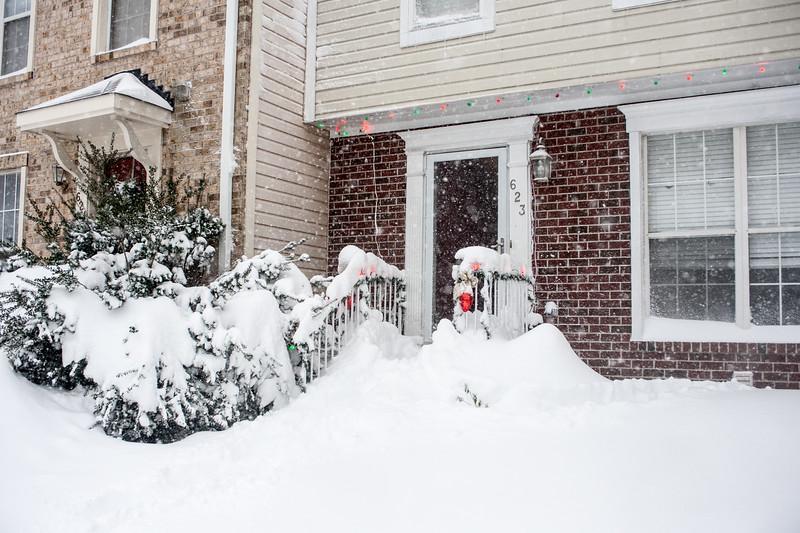 Snowzilla-2.jpg