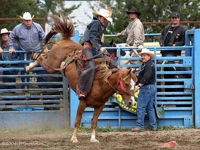 Roy Rodeo 2008