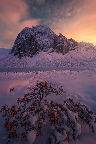 Yukon sunset vertical copy.jpg