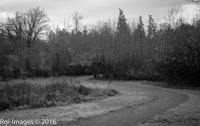 Hylebos 20161203