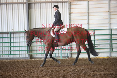 Class 5 Hunter Under Saddle - Adults
