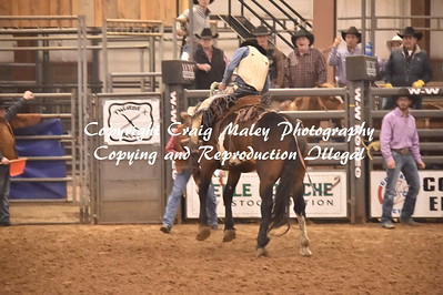 SADDLE BRONC 3RD GO 11-27-2016