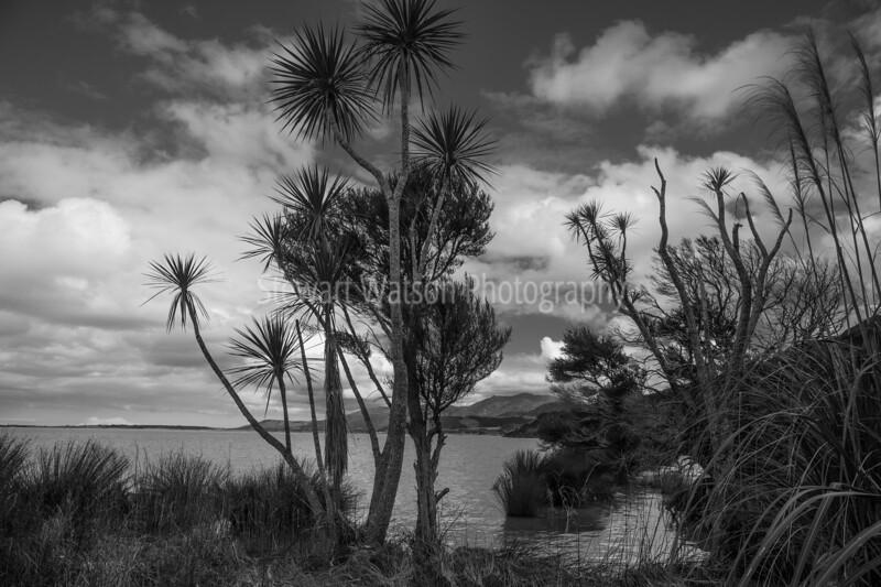 Lake Wairarapa-16SmugMug.jpg
