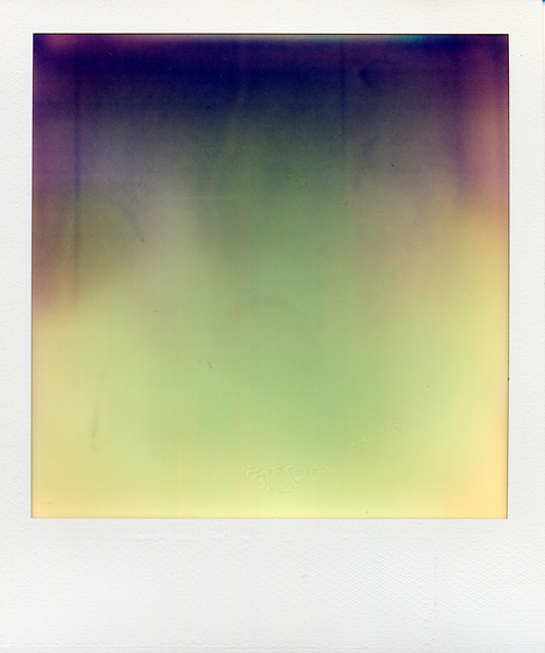 polaroid034.jpg