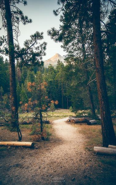 08_10-13_2017_Yosemite_WayToMountain_01.jpg