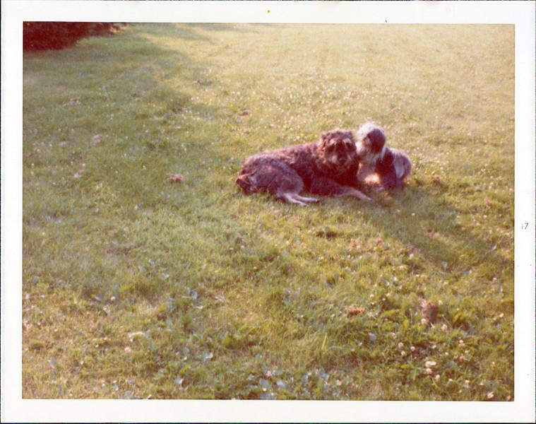1974 Teagan Utsi 2.jpg