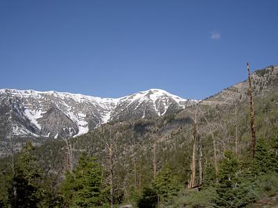 Mummy Mountain - Spring Mountains  6.9.05-6-10.05