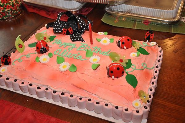 Alivia's First Birthday Celebration Dec 2012