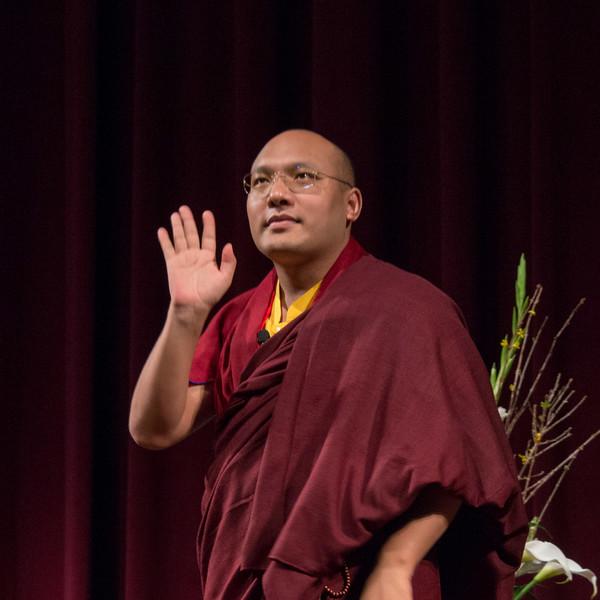 20150317-CCARE-17th-Karmapa-7568.jpg