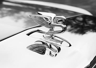 Bentley South Africa