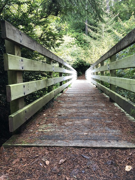 Bridge from campground to trail system.