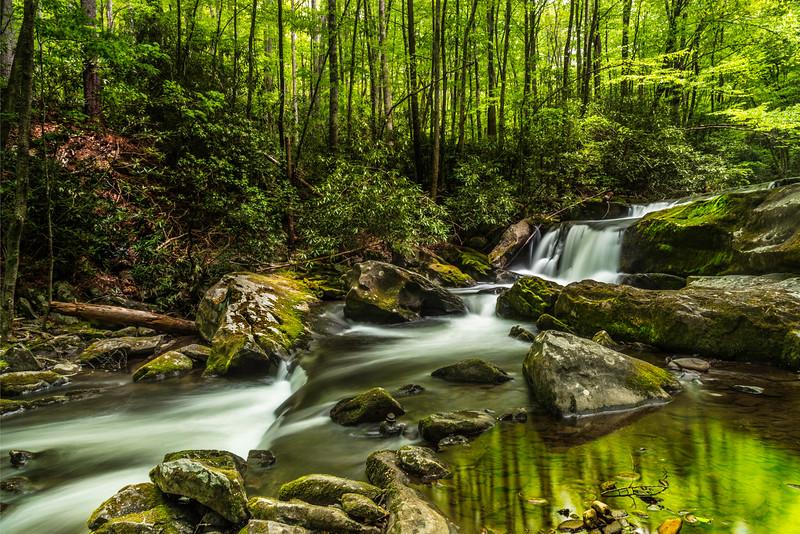 Middleprong trail waterfall.jpg