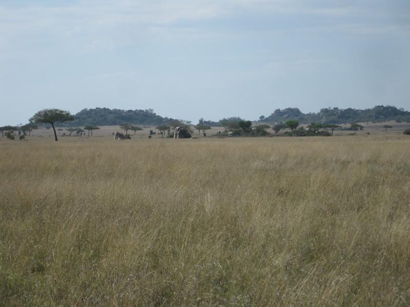 Tanzania14-3514.jpg