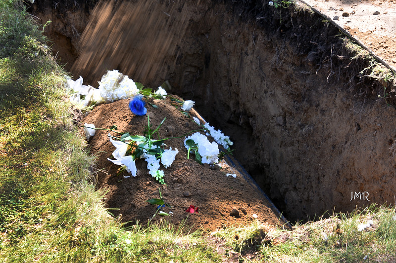 011  Coffin flowers.jpg
