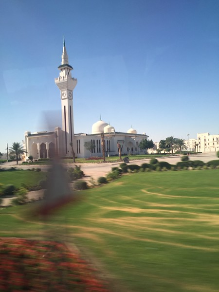Doha - Bridget St. Clair