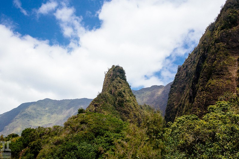 Maui Hawaii-53.jpg